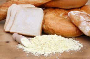 Farine de soja enzymatique