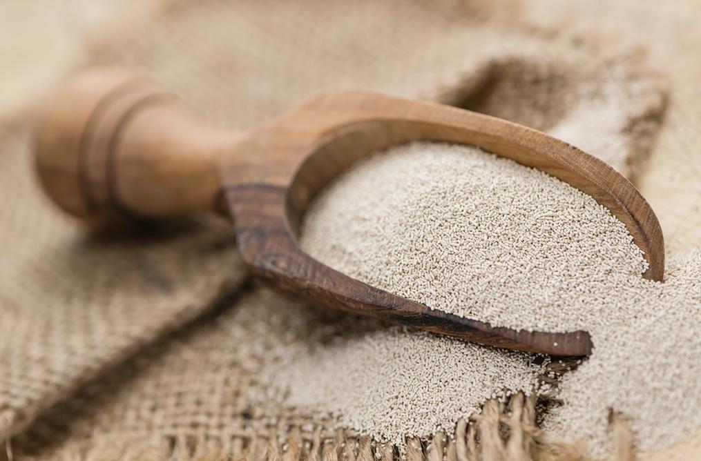 Levure bio, Clean label et Gluten free