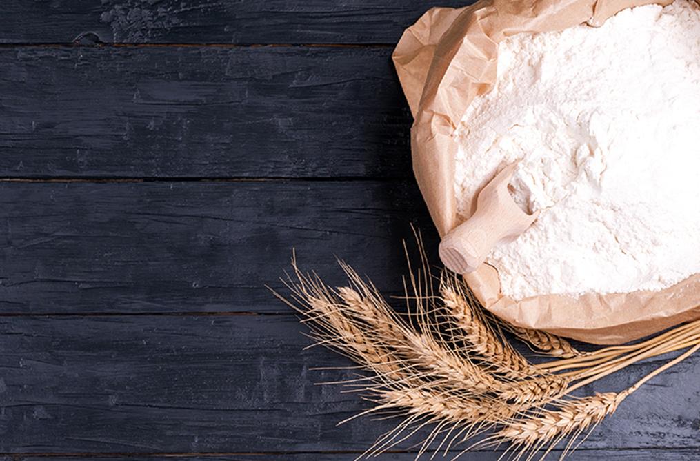 Protéines de blé / Gluten 1