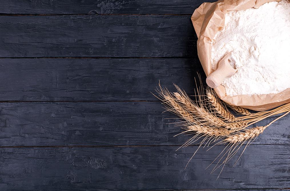 Protéines de blé / Gluten 2